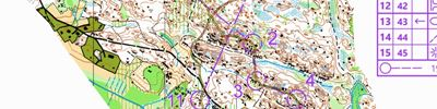 WOC2001 Short distance rerun (11-06-2020)